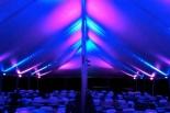 wedding-tent-pepe